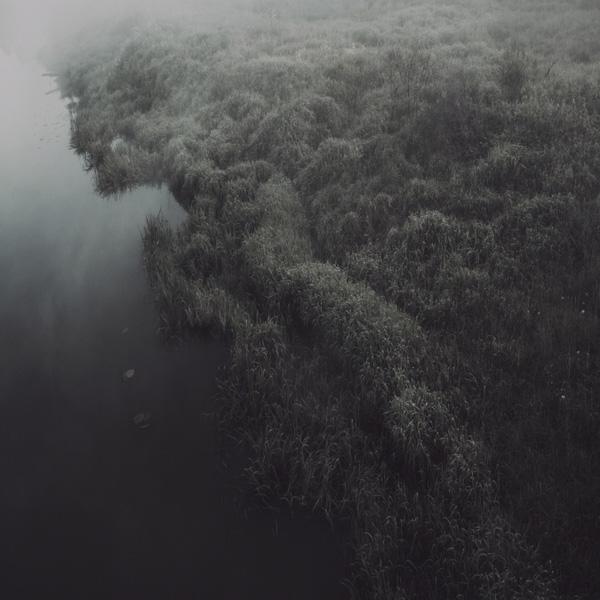 erie calm river grass